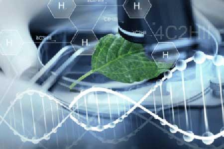 solucion-h2-verde